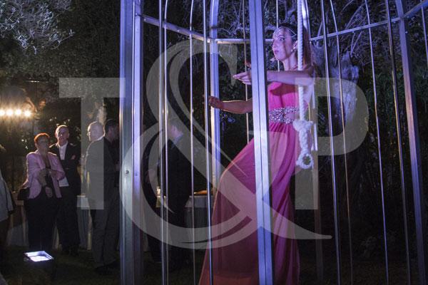 monte-carlo giant cage, monte-carlo cage, monte-carlo entertainment, monaco birdcage, monaco entertainment, monaco, entertainment
